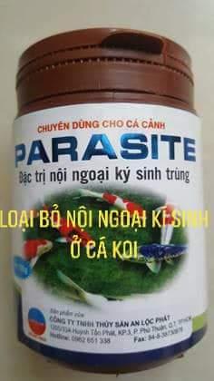 PARASITE - diệt ký sinh trùng