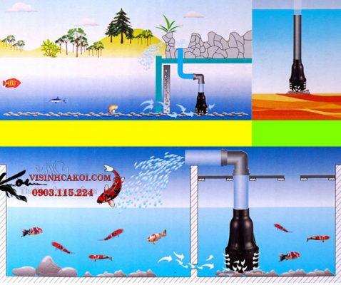 Máy bơm hồ koi Periha PG 15-20-25-35-40-50-60