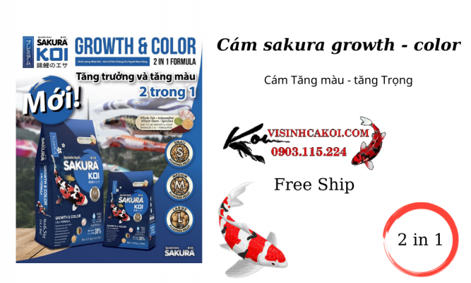 Cám sakura Growth - color