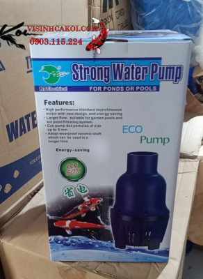 Máy Bơm Tạt Strong Water RS 22500