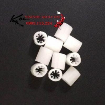 Hạt micro kaldnes