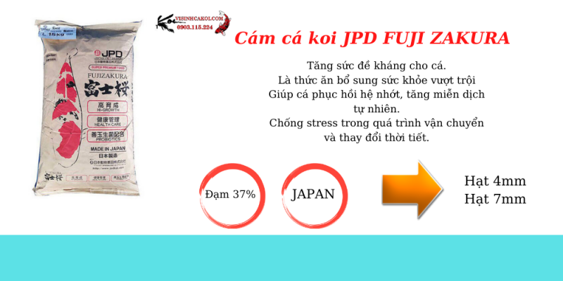 Cám JPD Fuij zakura