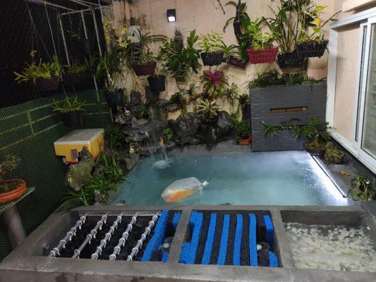 thi công lắp đặt thiết bị vật liệu lọc hồ cá koi